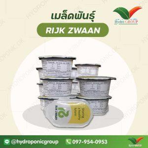 เมล็ดพันธุ์ RIJK ZWAN