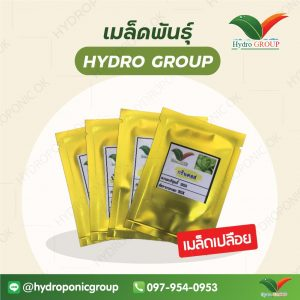 เมล็ดพันธุ์ HYDRO GROUP